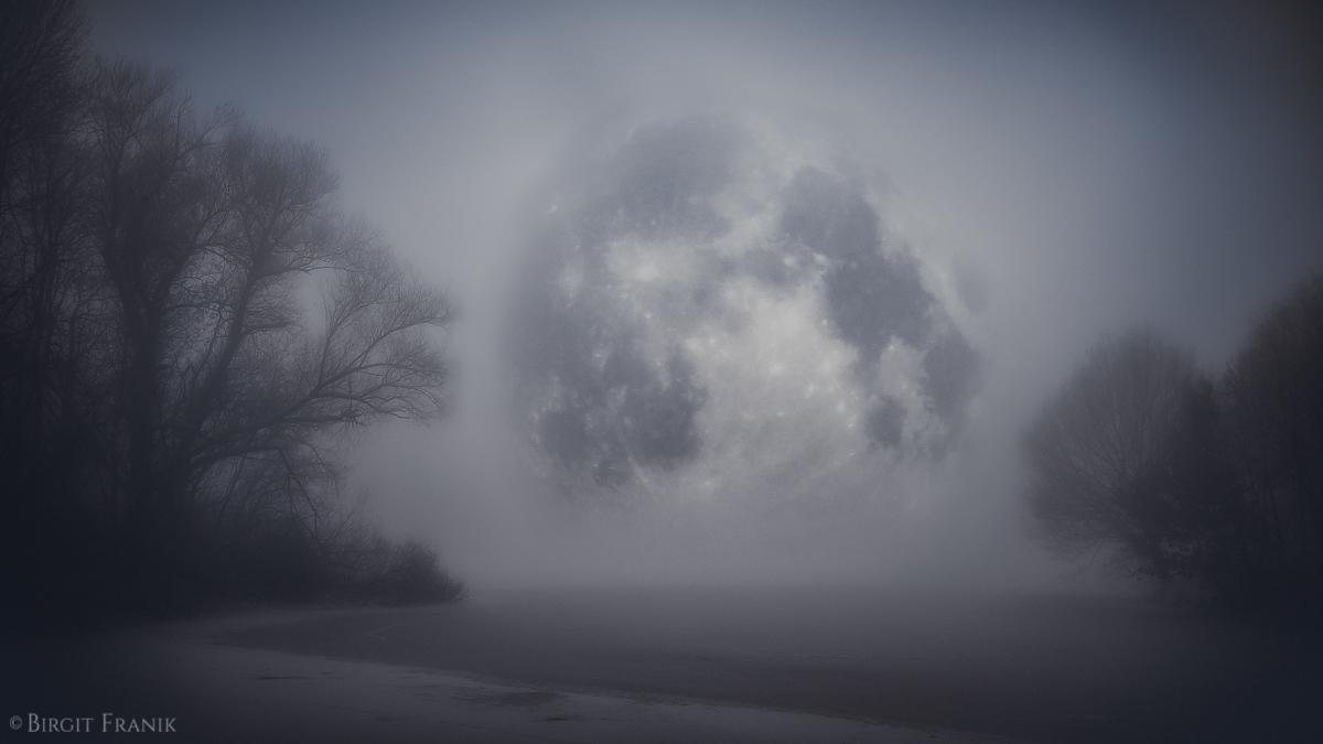 earth kissed moon