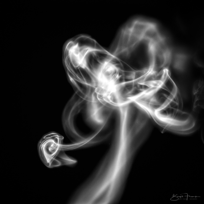 Rauch & Herz